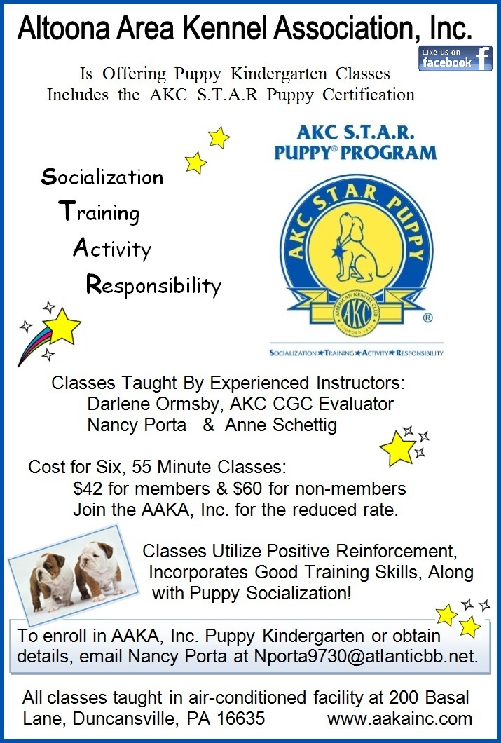 AAKA Puppy K Flyer jpg w blue